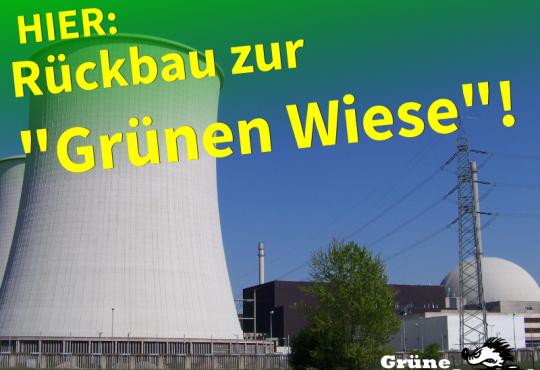 Energiewende_Grüne Wiese